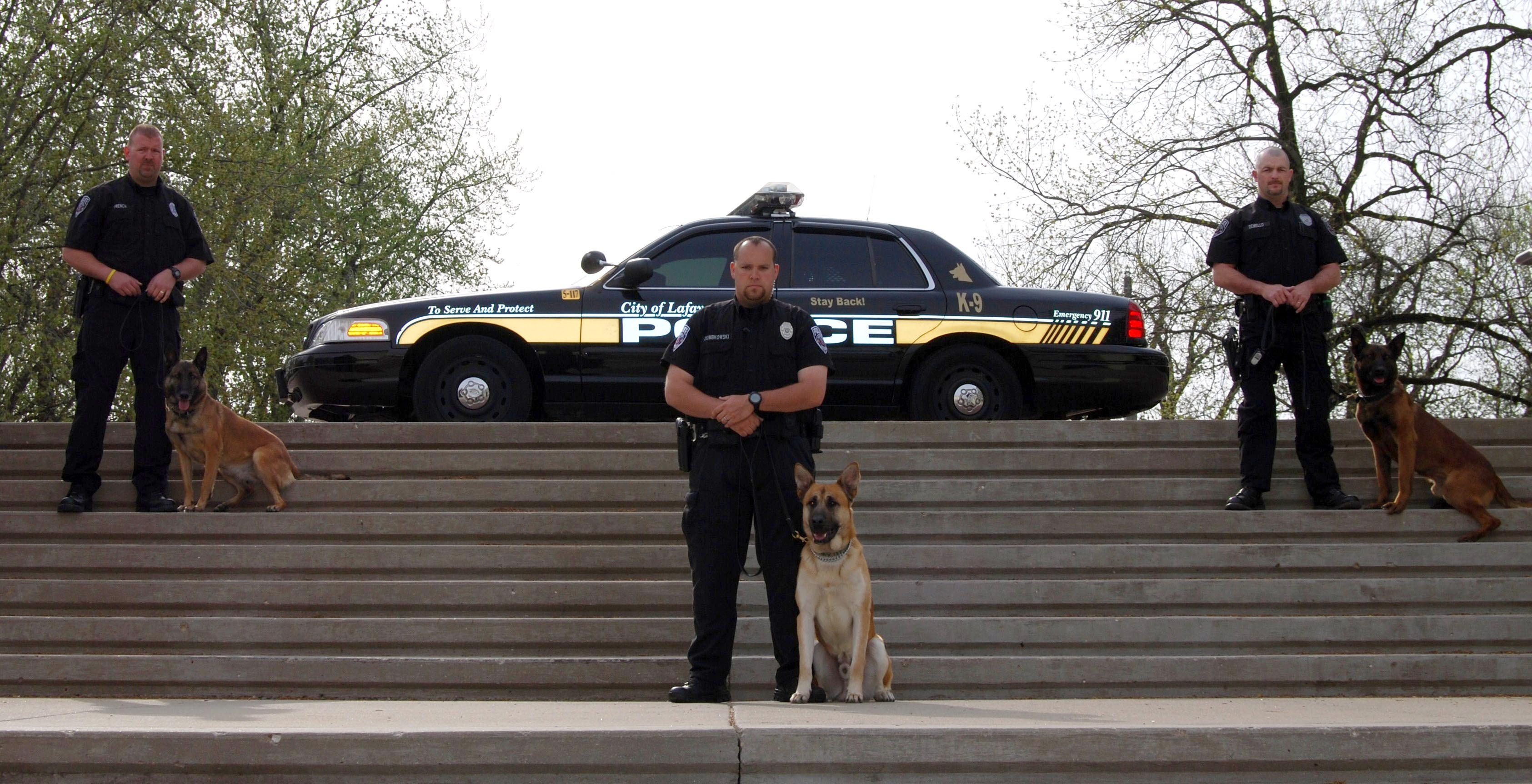 K9 Unit on Steps With a Patrol Car Behind Them